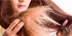 وصفات شعر جاف 240x120 - وصفات شعر جاف أفضل وصفات طبيعية للشعر الجاف مجربة